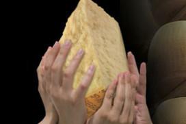 Geslaagde actie voor getroffen Italiaanse kaasboeren