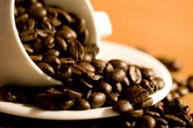 Schimmel bedreigt koffieoogst Guatemala