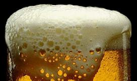 Fort Everdingen wordt bierbrouwerij