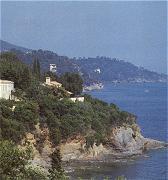 Provençaalse zomerwijnen