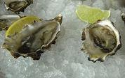 Visbureau: kwaliteit oester goed