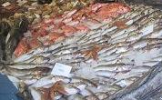 Visafslag veroordeeld voor visfraude