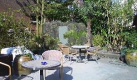 Tropische tuin voor Top-100 café Schiller