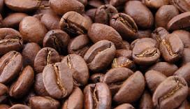 Supermarktprijsvechter start koffieformule