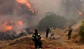 Hotels Rhodos ontruimd om bosbrand