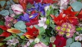 Bloemen voor rookvrije horeca