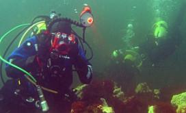 Zeeland zet in op duiktoerisme