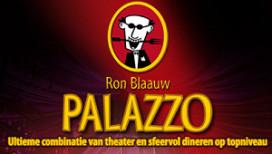 Ron Blaauw stopt met Palazzo