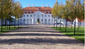Varkens naast gastenverblijf Duitse regering
