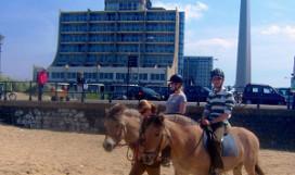 Carlton Beach lanceert paardenarrangement