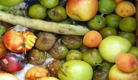 Ministerie wil ideeën voor minder voedselverspilling