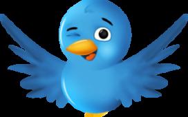 Restaurant Avocado lanceert Twitter-menu