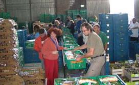 Voedselbank krijgt steun van Vineyard en Nonnerie