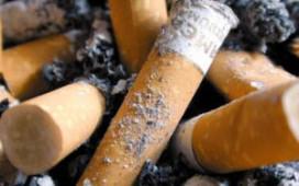 Jongeren steunen rookvrije horeca