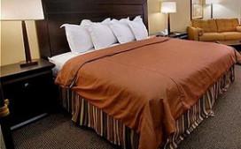 Omzetvolume hotels komende jaren met 1,75% omhoog