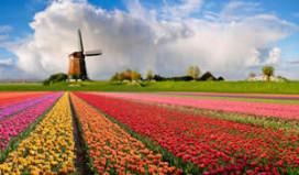 Nederlandse vakantieparken bomvol