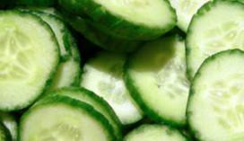 Nederlandse horeca betrekkelijk rustig onder 'komkommer-kwestie