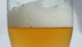 PINT wil verplichte bieropleiding in cafébranche