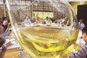 Bordeaux zoekt volume