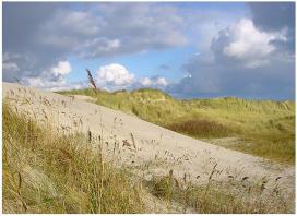 Nederlandse kust blijft populair bij de buren
