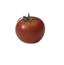 Groenten en fruit met kneuzing verwerken in sauzen en soepen