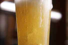 Biersommeliers Stibon organiseren bierfestival Werelds Breda