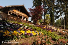 Terras Top 100 2014 nr. 65: Klein Zwitserland, Driebergen