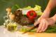 5 11 gezond koken 80x53