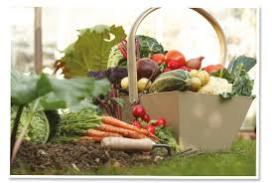 Speciaal programma van Eurest zet gasten aan tot gezonder eten