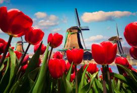 Toerisme steeds belangrijker voor economie
