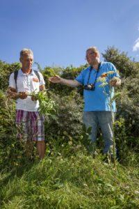 (C) Roel Dijkstra Fotografie / Foto Fred Libochant Oostvoorne / Wildkruiden wandeling met Frank Radder