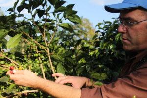Fotoreportage Misset op koffiereis in Kenia