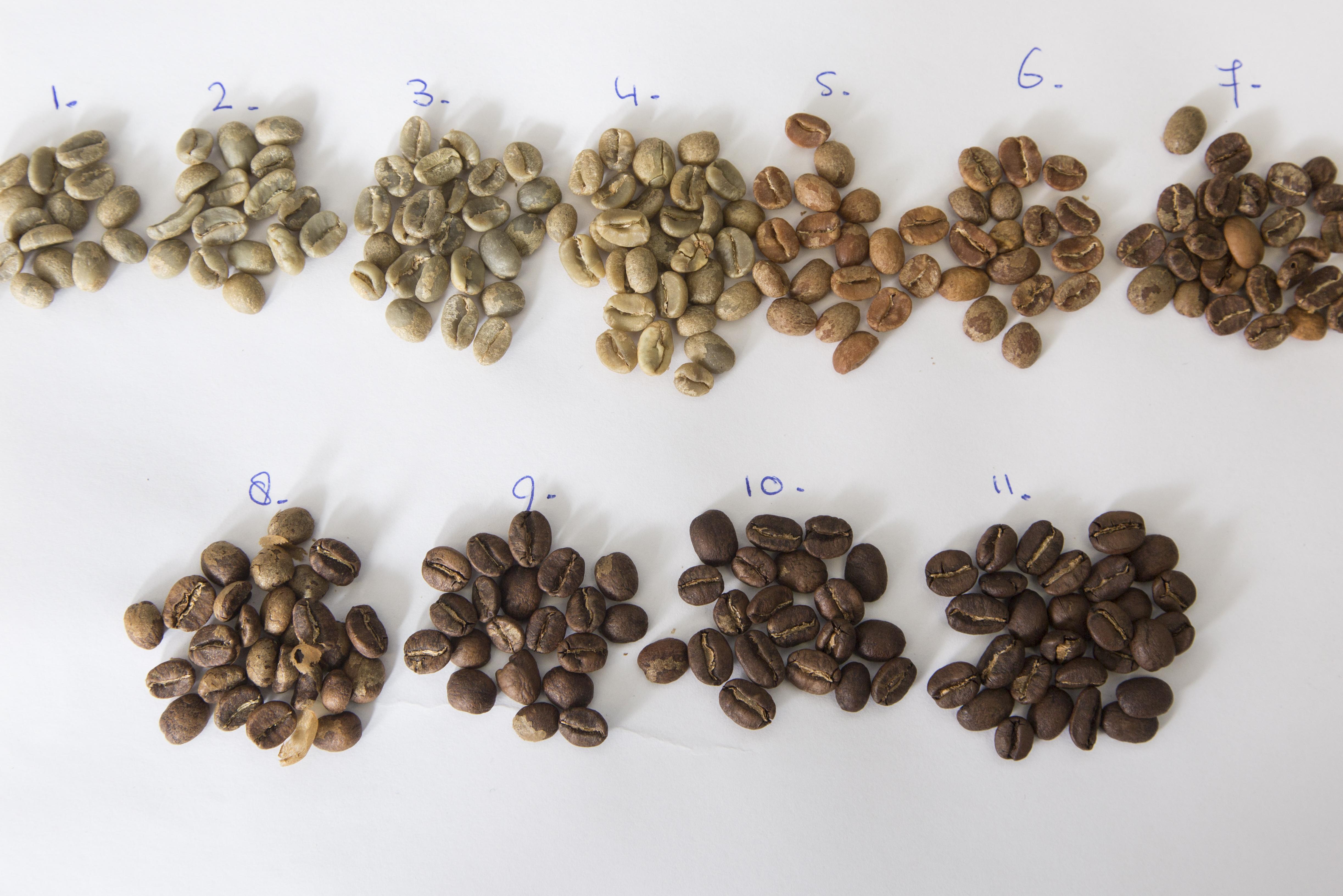 Koffie branden in 11 stappen