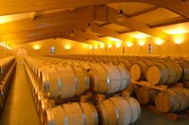 Pierre Castel: De Freddy Heineken van de wijn