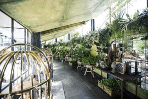 Vogelkooien met vintage zitjes in Apollo Amsterdam.