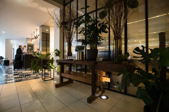 Planten maken deel uit van het lobbyconcept.