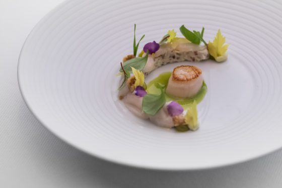 Rest. fred rotterdam waldorf coquille iberico 560x373