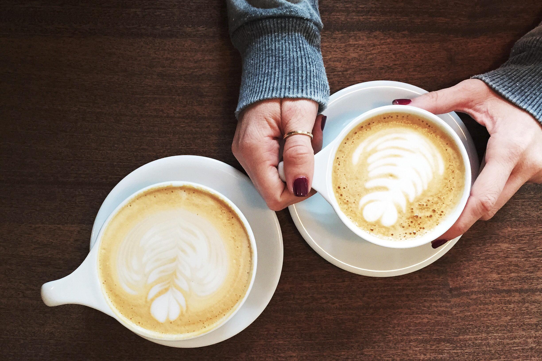 Alles over koffie: