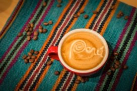 Peruaanse koffiesector verenigt zich in Coffees from Peru