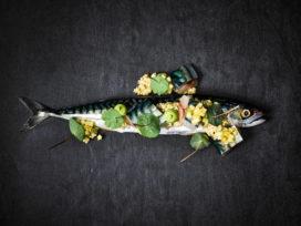 'Duurzame restaurants serveren massaal niet duurzame vis'