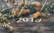 2019 80x49