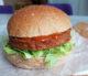 Vital4Skool lanceert de ve-GO burger