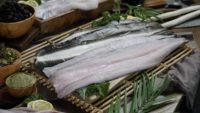 Onderzoek laat zien: 'Viswijzer staat duurzaamheid in de weg'